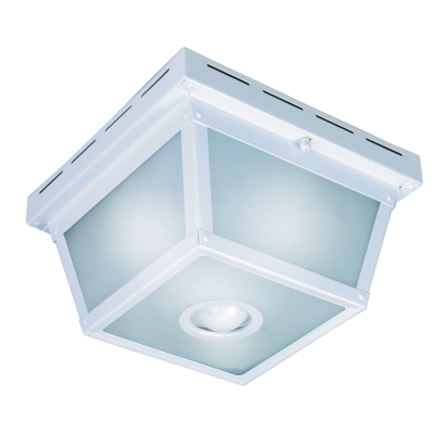 360 Degree Motion Activated Decorative Light Heathzenith